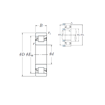NF 209 NSK Cylindrical Roller Bearings #1 small image
