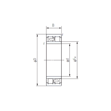 NNU4956 NACHI Cylindrical Roller Bearings #1 small image